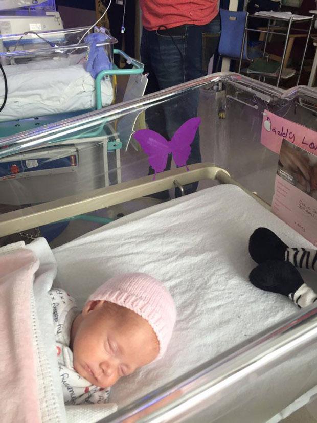 Schrecklich: Darauf soll ein lila Schmetterling auf dem Kinderbett aufmerksam machen