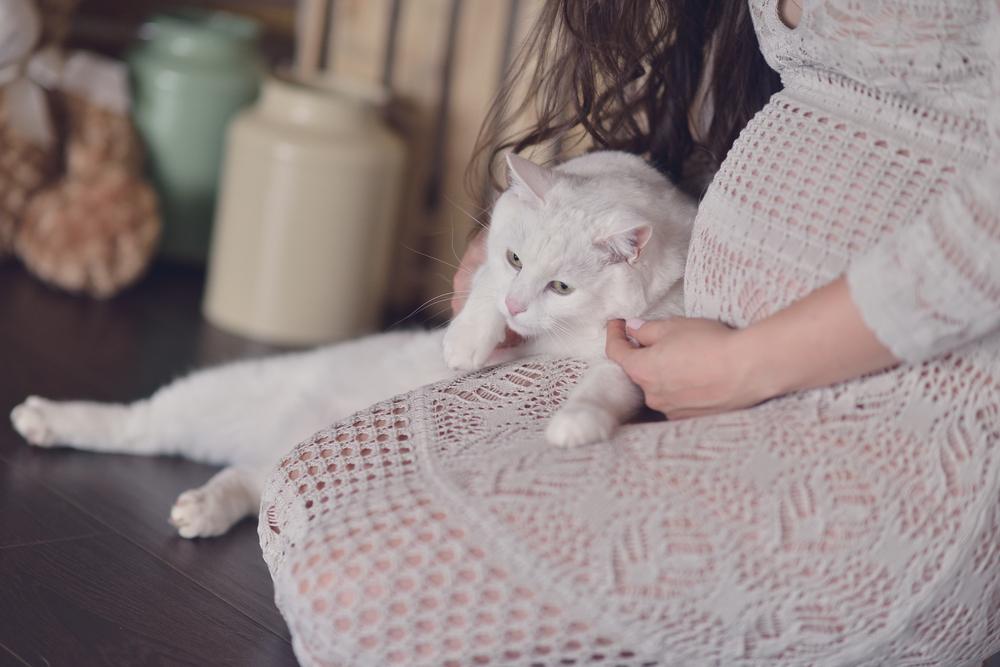 Was du zur Toxoplasmose in der Schwangerschaft wissen musst
