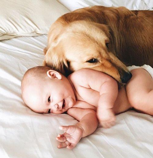 19 Bilder von Babies mit ihren Haustieren, die euch definitiv zum Schmelzen bringen
