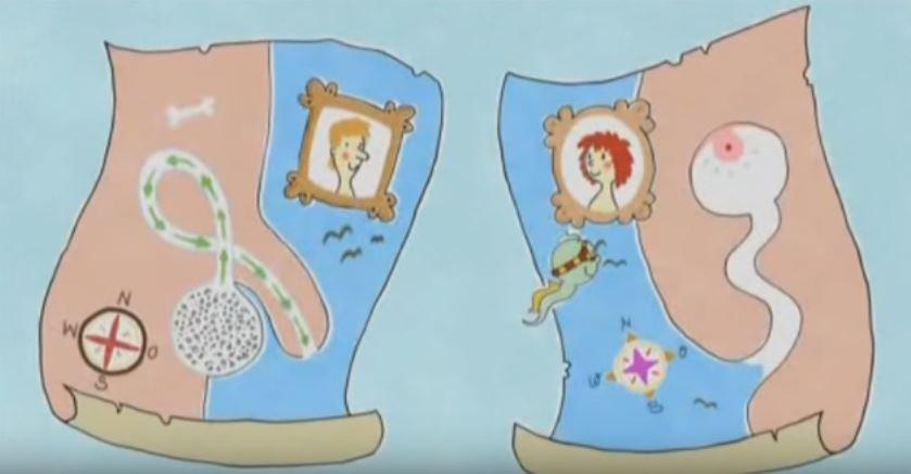 Aufklärung mal anders: So erklärt KiKa die Zeugung von Babys