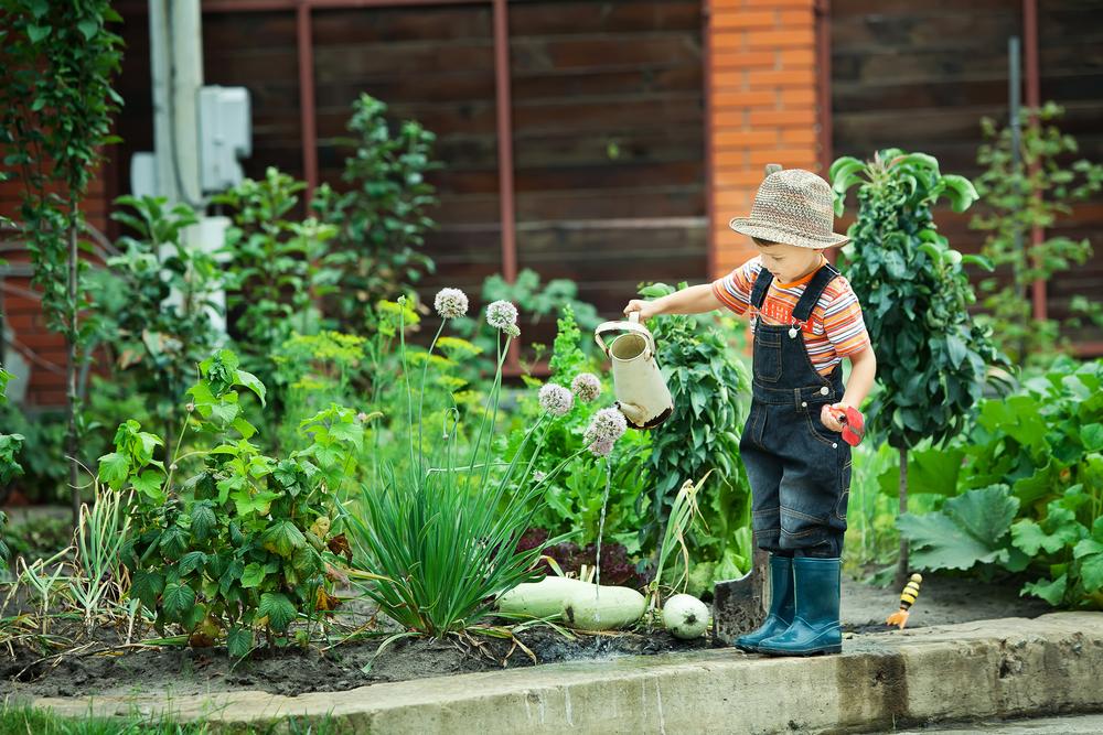 Vorsicht: Diese beliebten Pflanzen sind giftig für eure Kinder