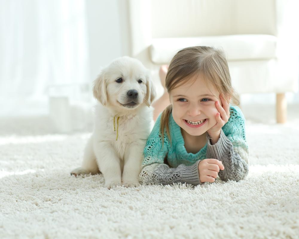 Wissenschaftlich bestätigt: Hunde lindern Stress bei Kindern