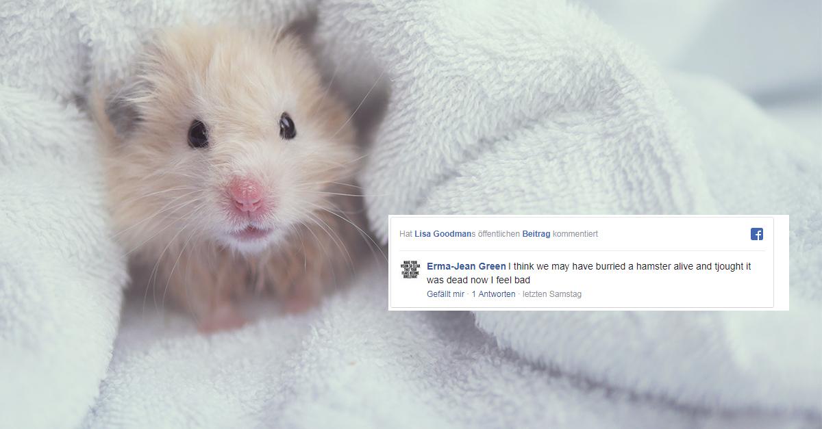 Mütter weltweit fürchten Hamster tot begraben zu haben