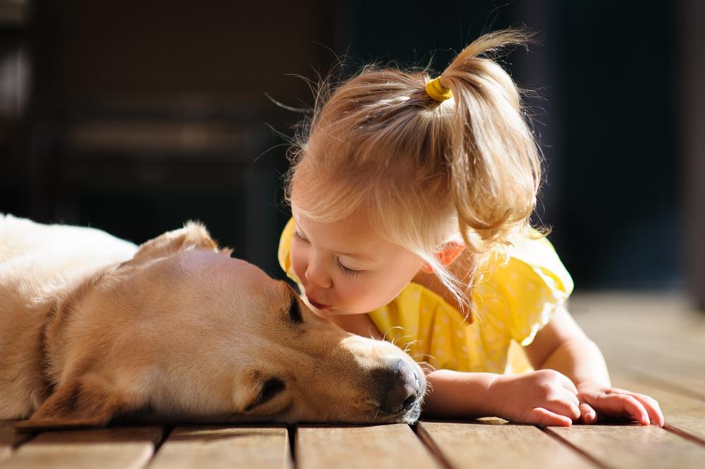 Warum Kinder die mit Hunden aufwachsen gesünder sind