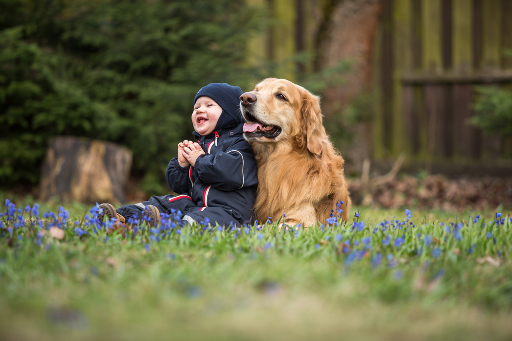 Baby plus Haustier: So fördert man eine gute Beziehung