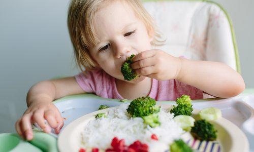 Veganer Kindergarten in Wien sorgt für Aufregung