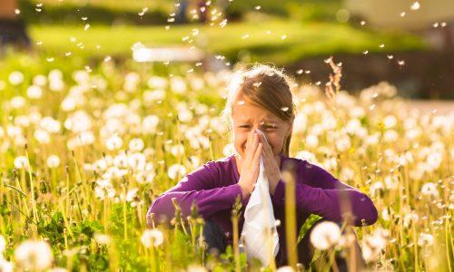 So hilfst du deinem Kind, die Pollenzeit zu überstehen