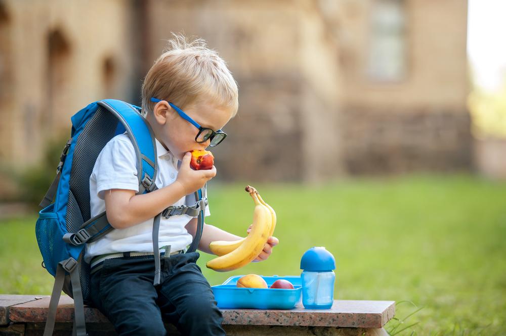 Obst-Quetschis: Gesunder Snack oder Zuckerbombe?