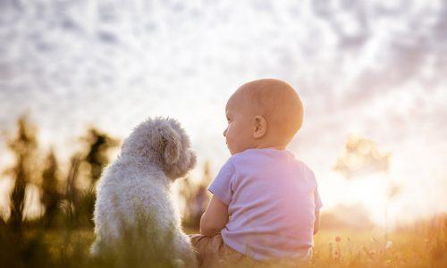 Kind und Hund: Wie es als Zweifachmama ist, auch noch einen Welpen zu erziehen