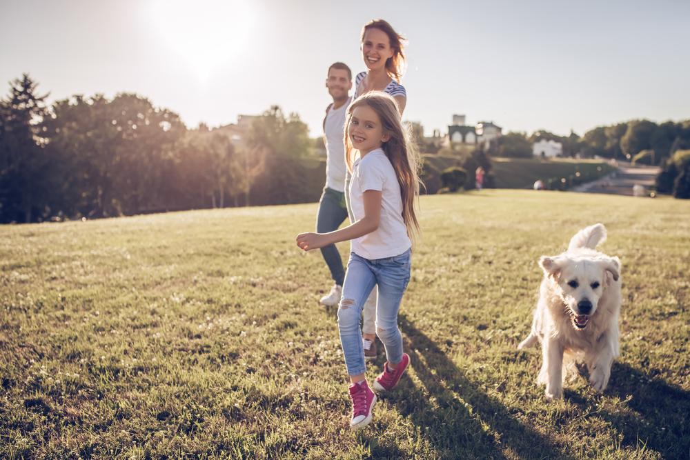 Familienhund ja oder nein?