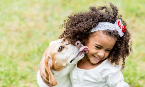 Kontakt mit Hunden in der Kindheit schützt vor Schizophrenie