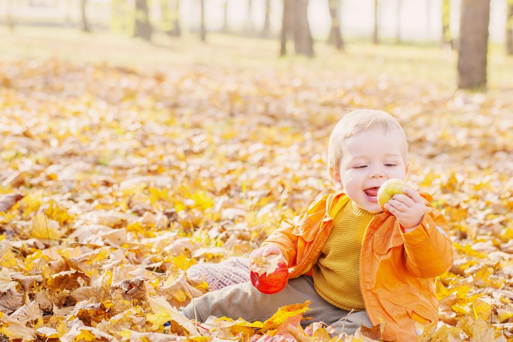 5 spannende Ideen für Groß und Klein im Herbst