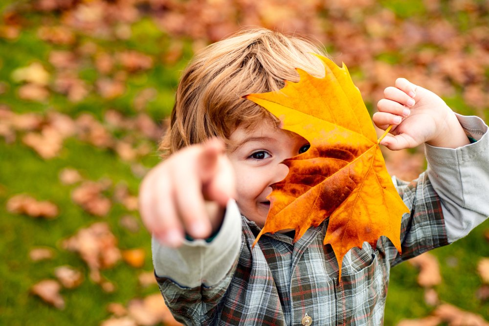 Den Herbst mit allen Sinnen erleben