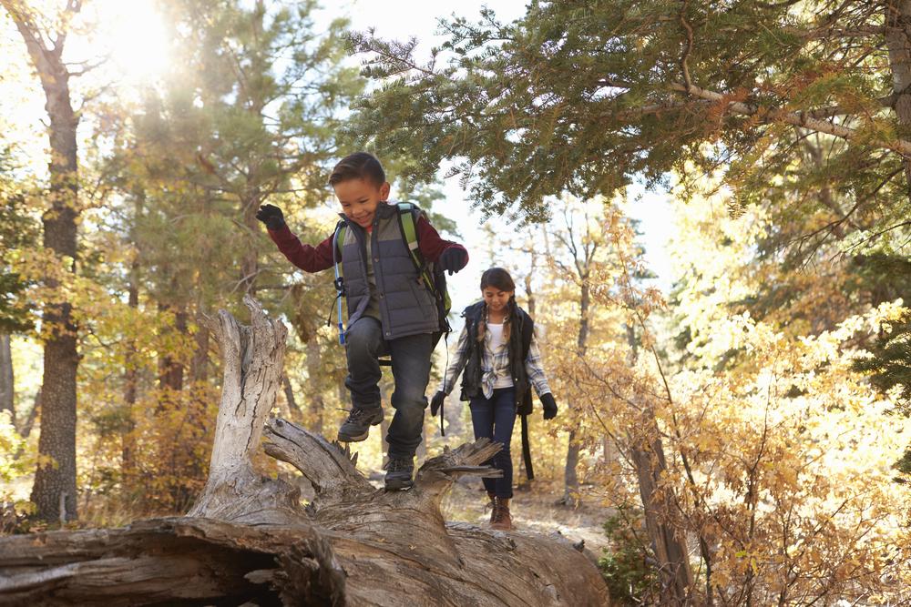 4 Gründe, warum du regelmäßig mit deinem Kind in den Wald gehen solltest